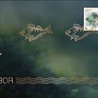 European Perch - Norden Stamp - (Golden FDC)
