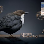Europa 2019 - Norway's National Bird - Golden FDC