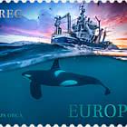 哺乳动物-逆戟鲸