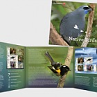 2017 Recovering Native Birds Presentation Pack