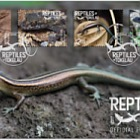 2017 Reptiles of Tokelau First Day Cover