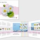 2019 Native Alpine Flora Presentation Pack