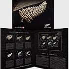 2019 All Blacks Presentation Pack