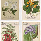2021 Sarah Featon - Botanical Artist