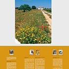 Alentejo Algarve Self-Adhesive