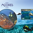 The Azores - Certified by Nature (Dive)
