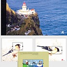AZORES 2008 (MS Booklet)