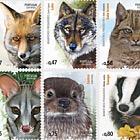 Mammalian Predators