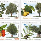 Trees of the Mediterranean
