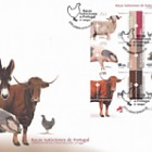 Portuguese Autochtonous Breeds - FDC M/S