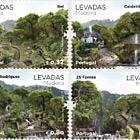 Levadas- Madeira