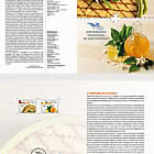 Traditional Gastronomy in the Mediterranean - The Perfume of Citrus - Brochure with Set comes as CTO