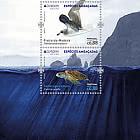 Madeira - Europa 2021 - Endangered National Wildlife
