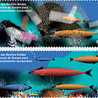United Nations Decade Of Ocean Sciences For Sustainable Development
