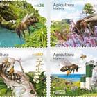 Apiculture - Madeira Island