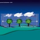 International Year Of Statistics 2013