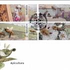 Apiculture - Portugal- (FDC Set)