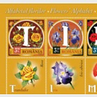 Flowers' Alphabet