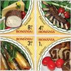 健康生活!罗马尼亚传统