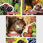 水果和动物