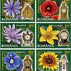 Reloj de las flores