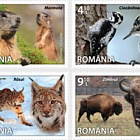 Fauna: Species from Romania