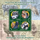 Fauna from Romanian Nature Reserves