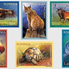 Protected fauna from Romania