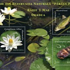 Unique Items from the Natural Reservation Petea Creek - Baile 1 Mai – Oradea