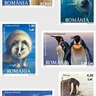 Polar Fauna