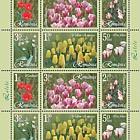 Tulips (Type I)