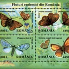 Endemic butterflies in Romania