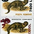 Animals 1993 - snake overprint