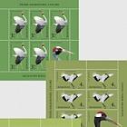 Migratory Birds - Cranes
