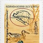 Europa 1999
