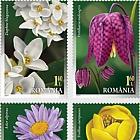 Patrimonio Florístico de Rumanía