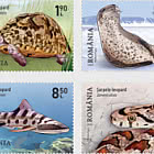 Leopard-Type Animals