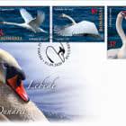 Los Cisnes del Delta del Danubio