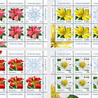Winter Flowers - Sheets x 5 Stamps + 1 Labels