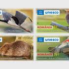 Rumänien, 65 jahre in der UNESCO. Donaudelta, 30 jahre im UNESCO-Welterbe