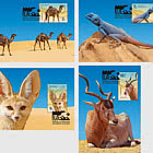 Desert Fauna