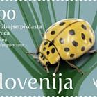 Fauna - Ladybird - 22-spot Ladybird