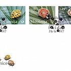 Fauna - Ladybird (FDC-S)