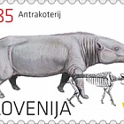 The Anthracothere - An Oligocene Mammal from the Zasavje Region