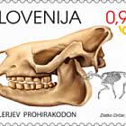Mammiferi Fossili della Slovenia