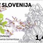 Flora 2020