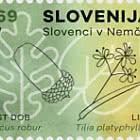 Slovènes en Allemagne