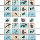 Birds 2015