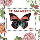 Butterfly 2016 -  Prepona Praeneste
