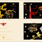 3 Offices) - World Bee Day - FDC Triple